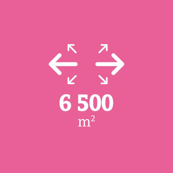 6 500 mètres carrés